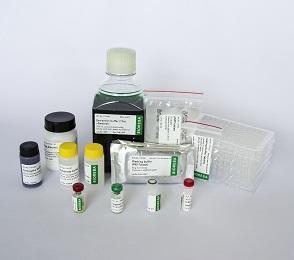 ToBRFV Reagent set 960